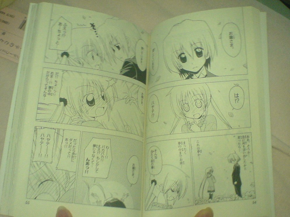 Nagi dreams of Hayate raeping her. Haha.